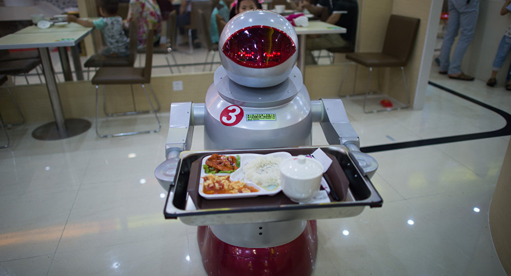 Industrial Food Robot